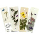 Collection of Butterfly Bookmarks